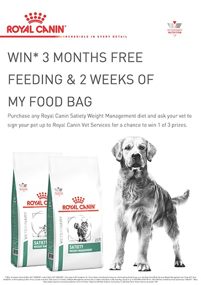 royal-canin-dog-3-months-free-and-my-food-bag