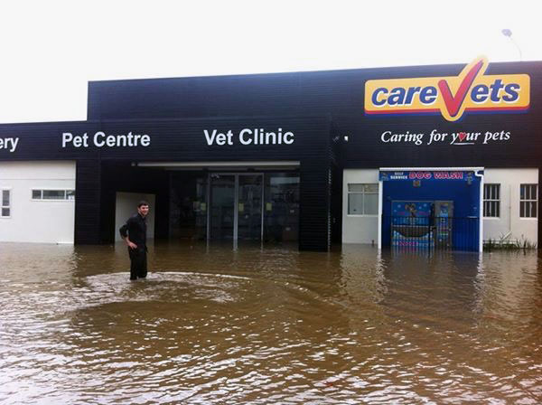 CareVets Porirua flood damage May 2015