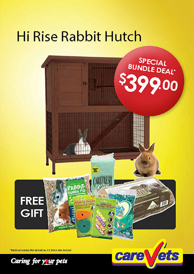 Hi-rise Rabbit Hutch