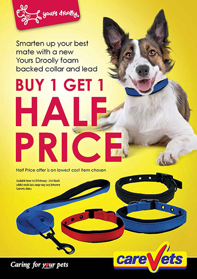 Yours-Droolly-Collars-And-Leads