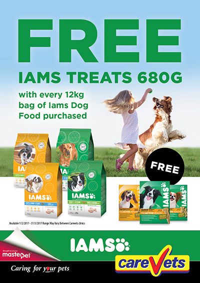 Iams-Free-Dog-Treats