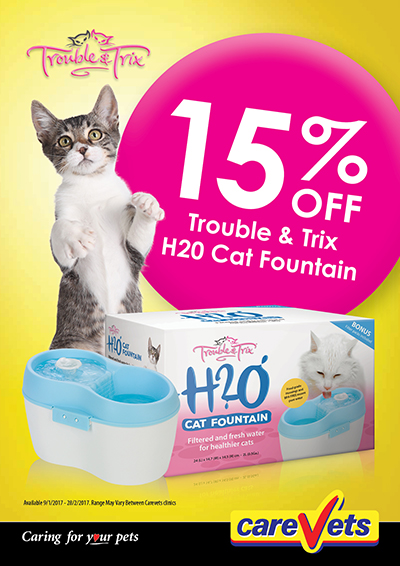 Trouble-n-Trix-15off-Cat-H20-Fountain