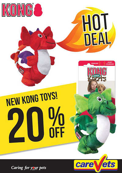 kong-toys-hot-deal-20-off