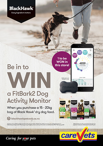 fitbark2-dog-activity-monitor