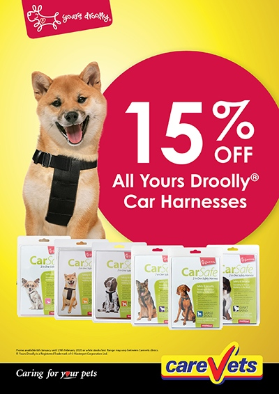 Yours-Droolly-Dog-Car-Harnesses