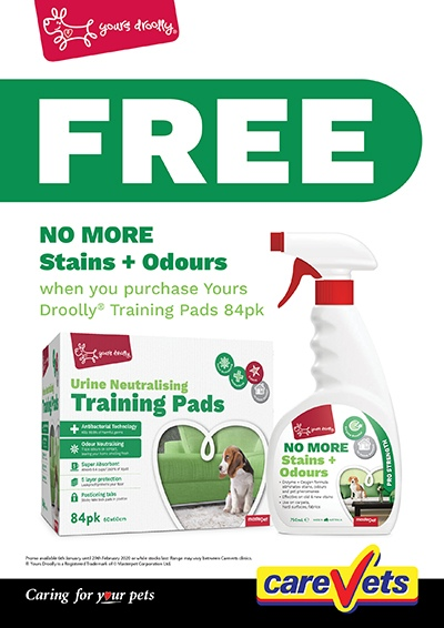 Yours-Droolly-No-More-Stains-And-Odours