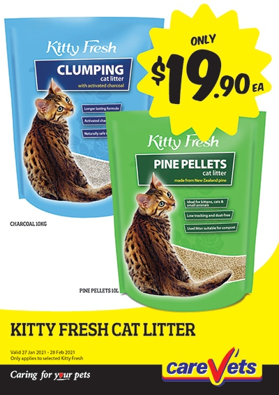 kitty-fresh-cat-litter