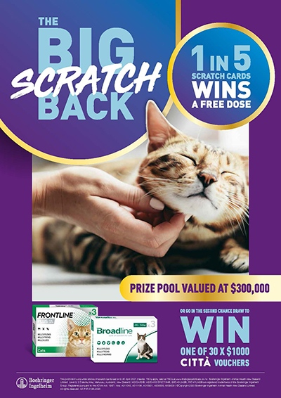 the-big-scratch-back-feline