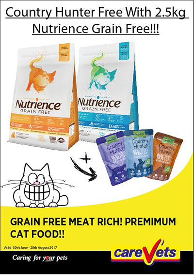 country-hunter-treats-free-with-nutrience-grain-cat-food