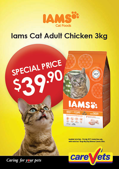 iams-cat-adult-chicken-3kg-special-price