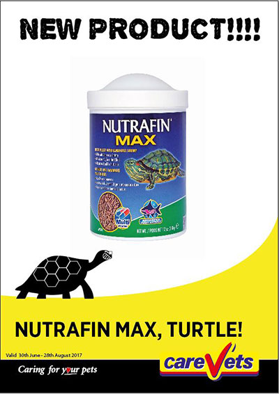 nutrafin-max-for-turtles