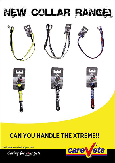 xtrm-collars-and-leads
