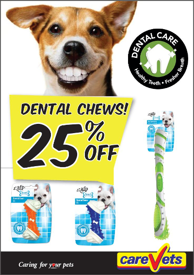dental-chews-25off
