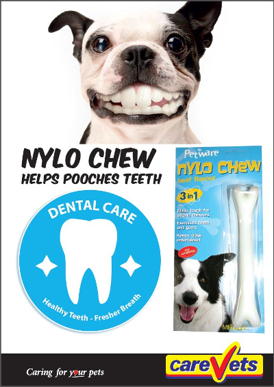 nylo-chew-helps-pooches-teeth