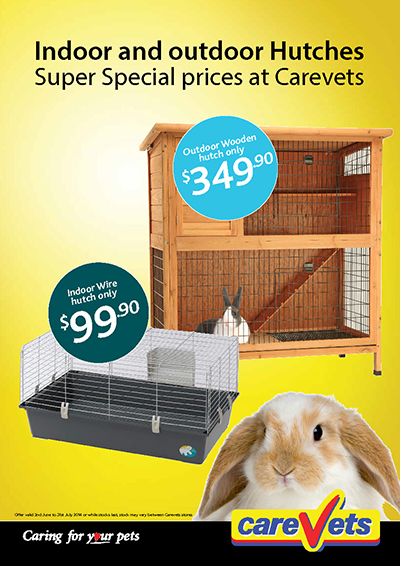 Rabbit Hutches indoor & outdoor