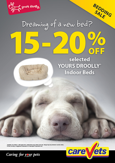 15-20-Off-Yours-Droolly-Dry-Indoor-Beds
