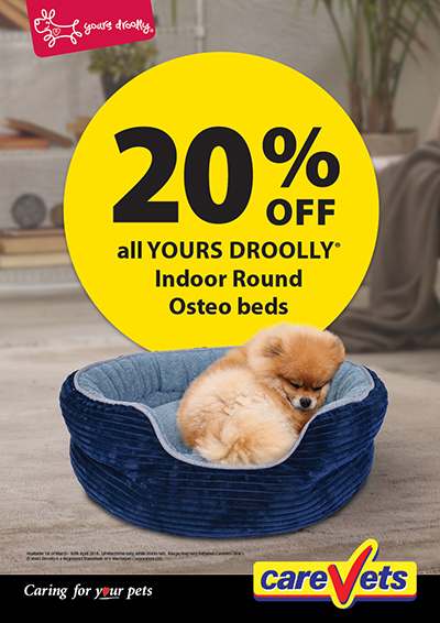 20-Off-Yours-Droolly-Osteo-Beds