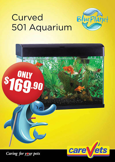 carevets-blue-planet-curved-501-aquarium