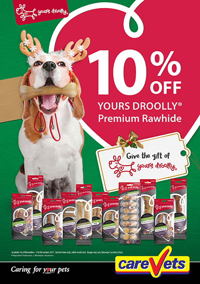 10-Off-Yours-Droolly-Rawhide-Treats