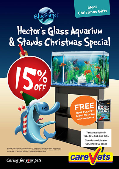 Hectors-Glass-Aquarium-And-Stands-15-Off-Christmas-Special