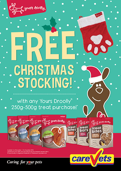 yours-droolly-free-christmas-stocking