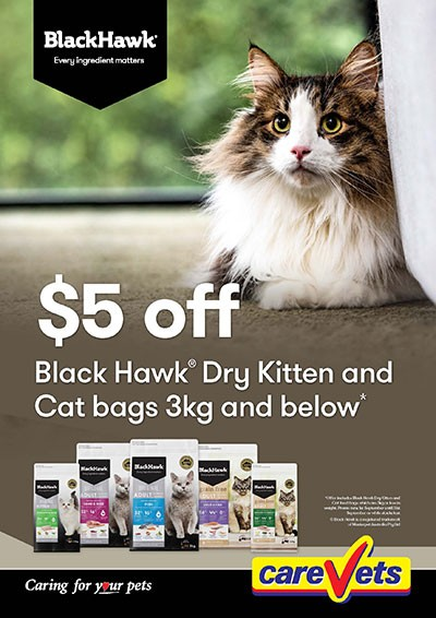 5-Off-Back-Hawk-Dry-Kitten-3kg