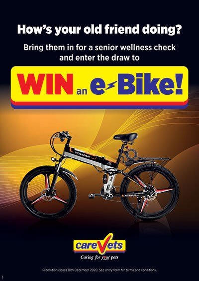 CareVets-EBike-Poster-Oct-2020