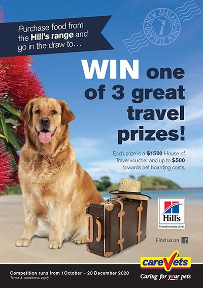 CareVets-Hills-Travel-Competition-Oct-2020