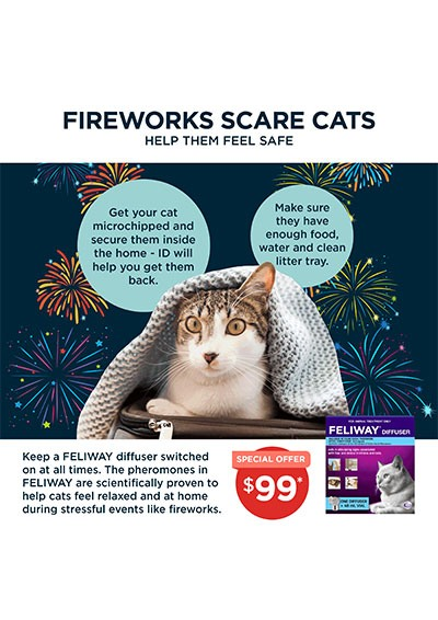 Feliway-Fireworks-Scare-Cats