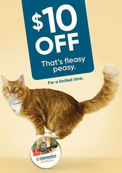 Seresto-Pet-Cat-Fleasy-Peasy