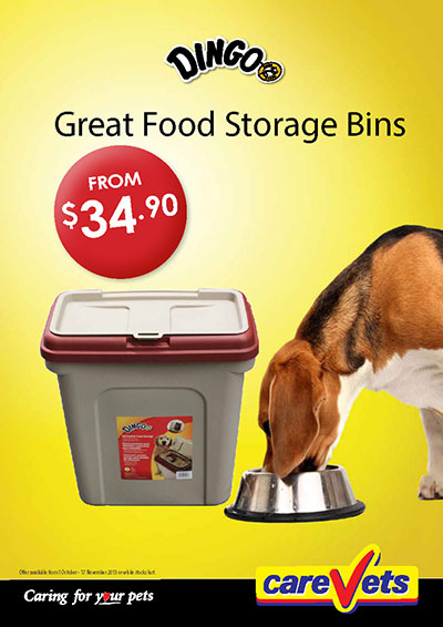 Dingo Great Food Storage Bins