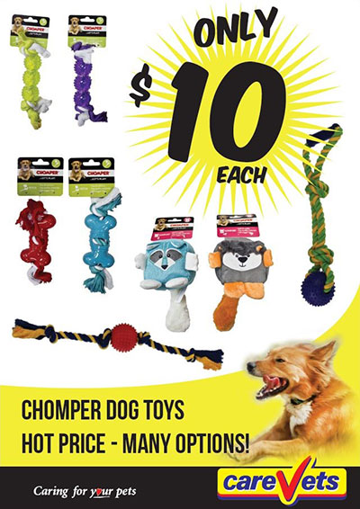 chomper-dog-toys-10-each