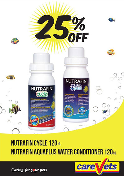 nutrafin-cycle-and-aquaplus-120ml