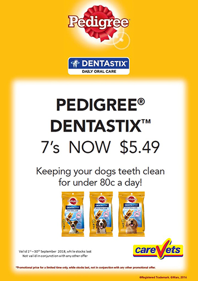 Pedigree-Dentastix-7s