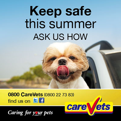 Keep Safe This Summer