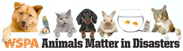 WSPA - Animals matter in Disasters