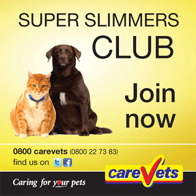 The CareVets Super Slimmers Club