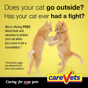 FREE Blood Tests and vaccines from CareVets in February 2013