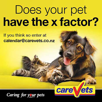 Does you pet have the X-Factor?