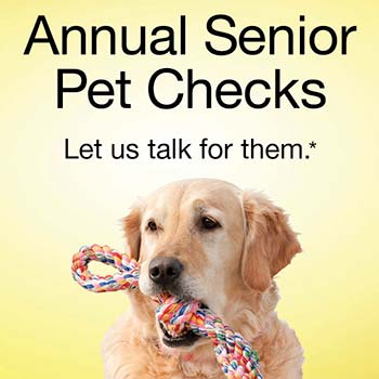 CareVets Annual Senior Pet Checks Promotion
