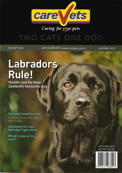 CareVets Two Cats One Dog Magazine - Autumn 2013