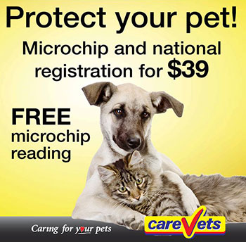 CareVets Microchip and National Registration Campaign