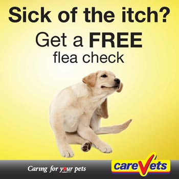 Sick of the Itch? Get a FREE Flea check at your local CareVets