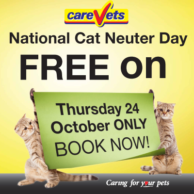 CareVets National Cat Neuter Day 24th October 2013