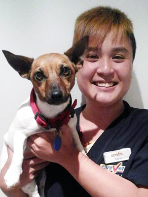 Alicia Soh - Vet Nurse at CareVets Mt Wellington
