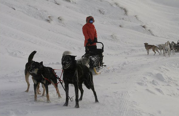 Hatchett and his sled dog team
