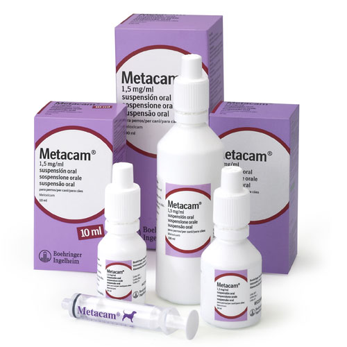 Metacam Oral Suspension Arthritis Treatment
