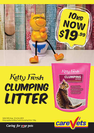 Kitty-Fresh-Clumping-Litter